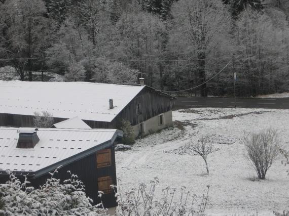 neige 10 11 2009