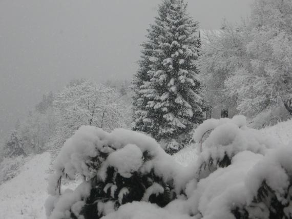 neige 30 11 2009