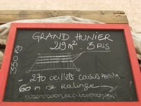 GRAND HUNIER
