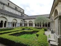 Cloître de Vaison la Romains Jardin