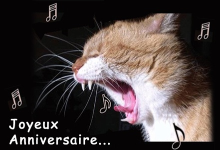 Anniversaires. - Page 4 Divers-anniversaire_36_chat_jpg-img