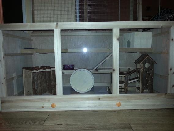 Cage hamster avec jouet2
