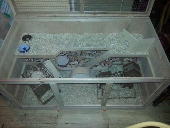 Cage avec litière