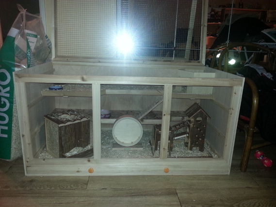 Cage avec litière2