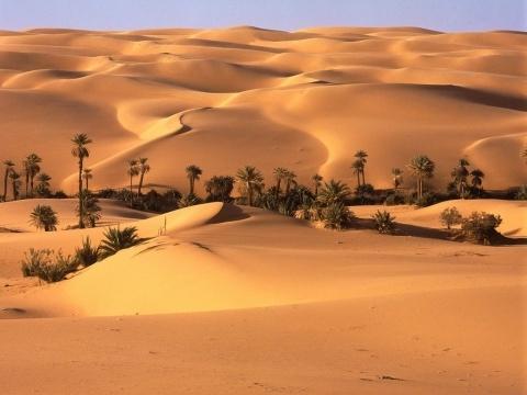 Désert-Libyque-egypte-voyage