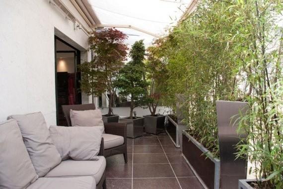 Brise Vue Balcon Bambou Plantes Pot Fleurs Canape Confortable 300