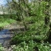Entendre le ruisseau  qu'elle enchantement