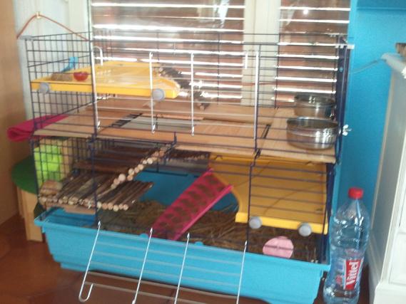 Nouvelle cage fabriquée maison