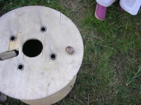 Escargot sur la table des enfants