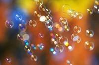 pov-54 -Une bulle hors du temps et de l'espace ...
