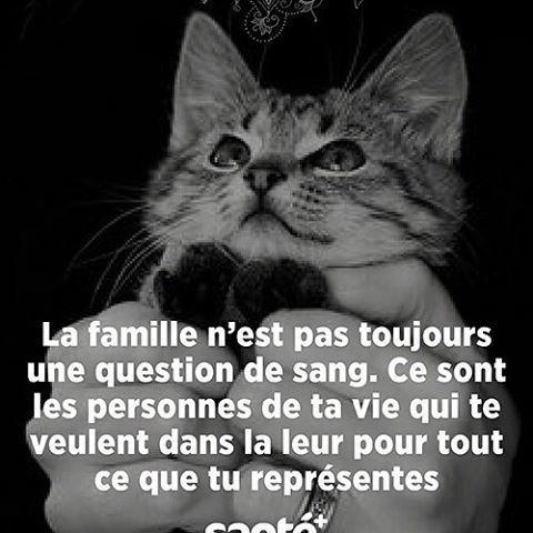 pov-56 - La famille ...