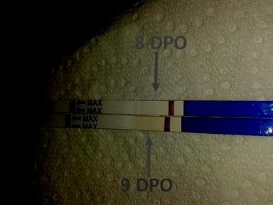 test 8 DPO (je sais, trop tôt, mais) - Tests et symptômes de