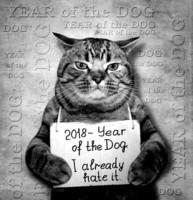 Année du chien