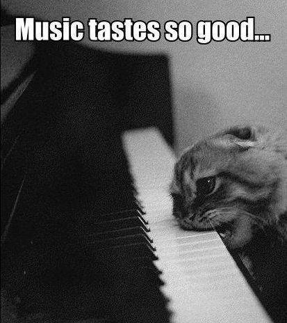 Quand la musique est bonne !