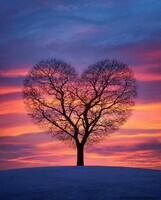 Coeur nature