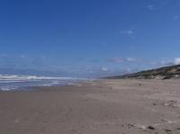 la plage (la canche)