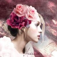 creations-324-img