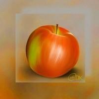creations-430-img