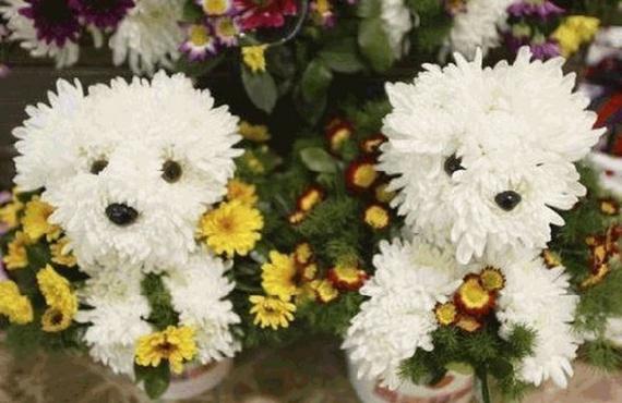 flora-fleur1-1226ec5