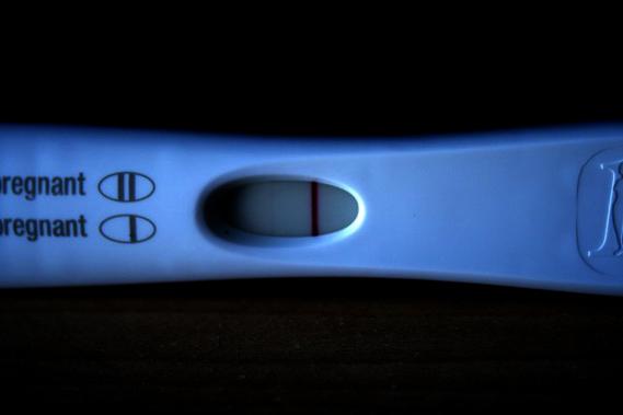 ovulation-img_962356-big