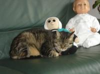 Même mon chat est amoureux de Bécassine