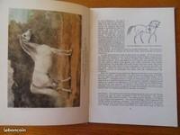 autre vue livre anglais ancien sur les chevaux