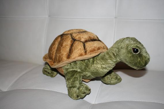 Peluche tortue (De Guyane)