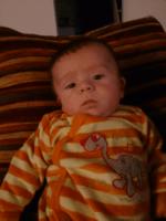 Bébé Oeuf
