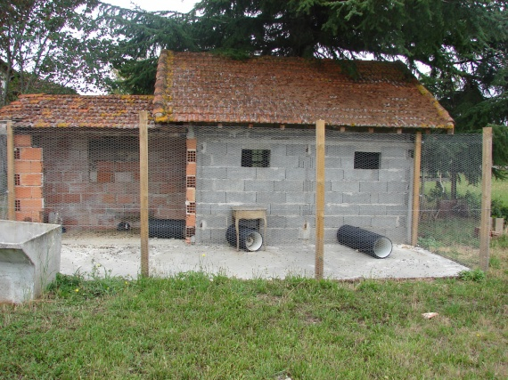 Maison de lapins b liers le b ton au sol et le grillage for Accessoire furet fait maison