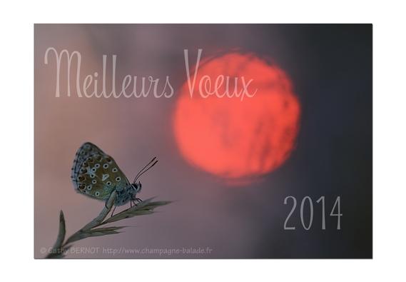 carte-de-voeux-2014