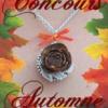 Doucefleur Design concours automne