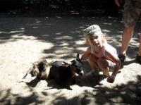 Valentine et les chèvres (zoo de la Palmyre)