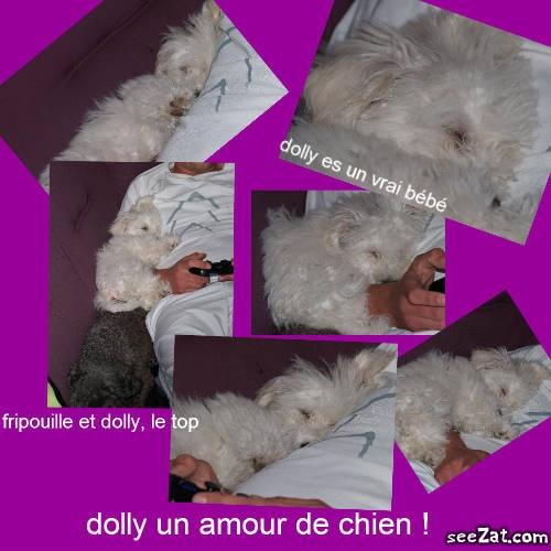dolly23