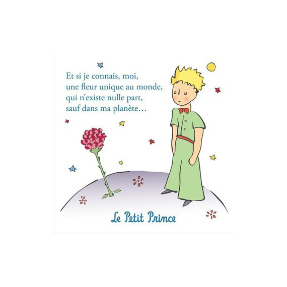 -la-rose-du-petit-prince