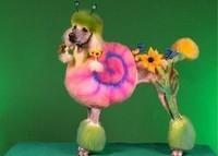 bizarre-chien
