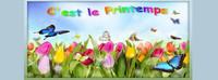 ban printemps blog