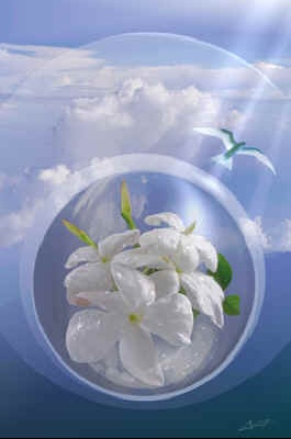 fleurbulcolomb