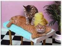 chat-massage