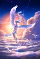 ange-cieloiseaux