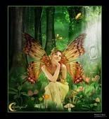 A_Fairy__s_Garden_by_CelestialDreams222222