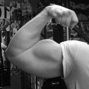 biceps-46
