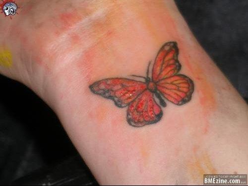 n5cq-butterfly-quenn