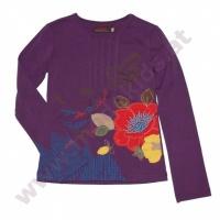 UGM hiver 2012 tshirt ML prune