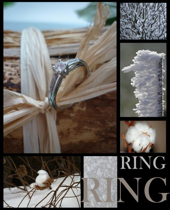 ring copy