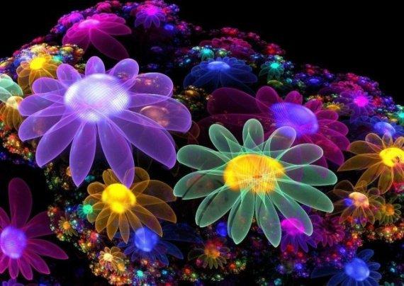 couleurs-beaute-paillettes-fleurs-multicolores-img