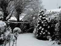 Jour de neige...
