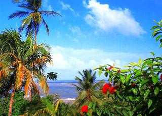 Iles du Salut-Guyane