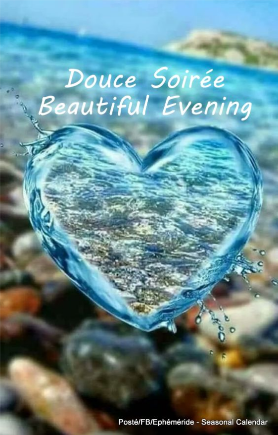 Bonne soirée