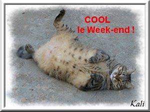 coolweekend