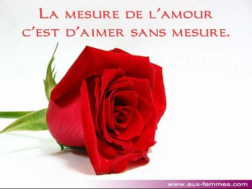 amour-3.jpg1.